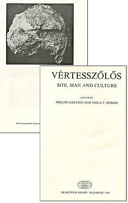 Fragment of Skull of Homo erectus palaeohungaricus - a resin copy of original 5