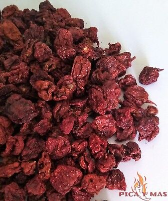 Carolina Reaper Dried Chilli Pods - Worlds Hottest Chilli Pepper - 10g 4