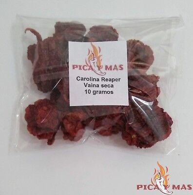 Carolina Reaper Dried Chilli Pods - Worlds Hottest Chilli Pepper - 10g 9