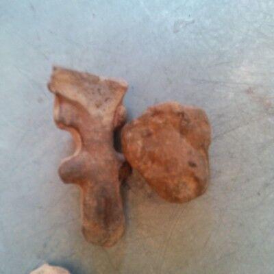 Antique Early Pre Columbian Terra Cota Figure Head South American Lot of 10 瓷 像 7