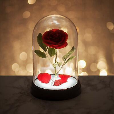 Lampada Incantata Disney La Bella e la Bestia Rosa incantata, Multicolore 3