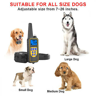 Dog Shock Collar With Remote Waterproof Electric for Large 875 Yard Pet Training 2