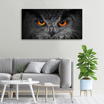 Leinwandbild Kunst-Druck 100x50 Bilder Tiere Teufelsaugen Eule