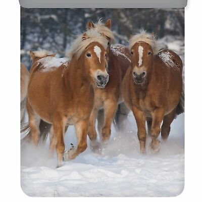 ESPiCO Winter Bettwäsche Trendy Bedding Freunde Einhorn Lama Faultier Flanell