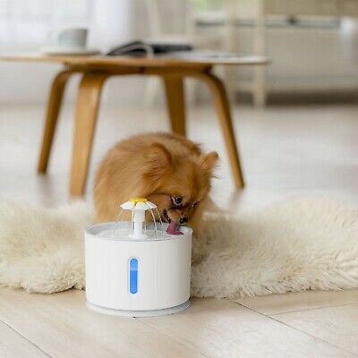 2.4L Automatic Pet Cat Water Fountain Drinking Dispenser LED Light Ultra Silent 9