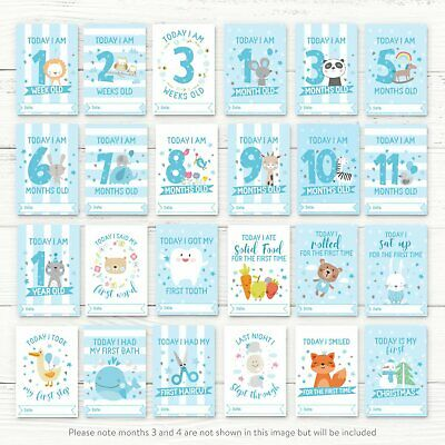 Baby Milestone Cards ~ 1st Year Memorable Moments Boy Age 2