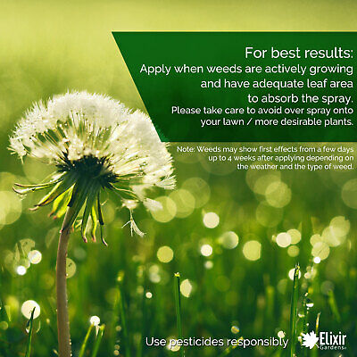 Weedkiller Gallup Home & Garden Glyphosate Commercial Strength treats 3332 sq.m 4