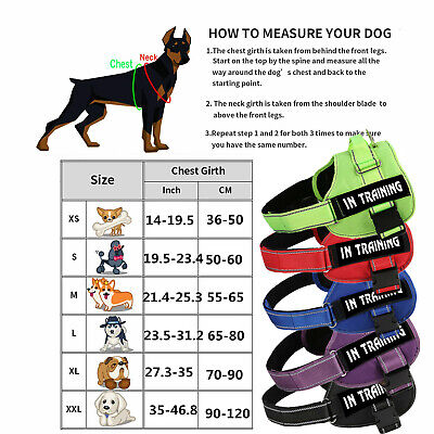ESA Dog Harness No Pull Collar Patch Emotional Support Therapy Pet Service Vest 2