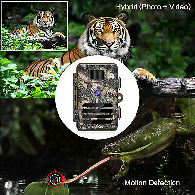 16MP Trail Camera IP66 Waterproof Outdoor Hunting Cam with No Glow Night Vision 8