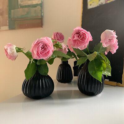 3x Tischvase 12cm Set Porzellan Schwarz Deko-Vase Blumenvase Glasvase Väschen 2