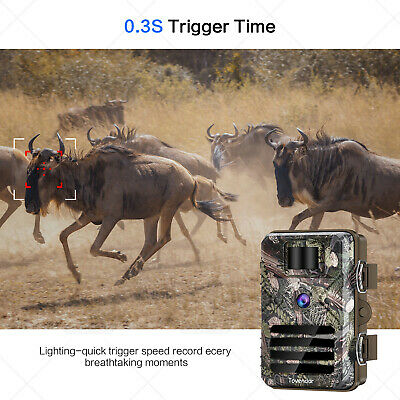 16MP Trail Camera IP66 Waterproof Outdoor Hunting Cam with No Glow Night Vision 5