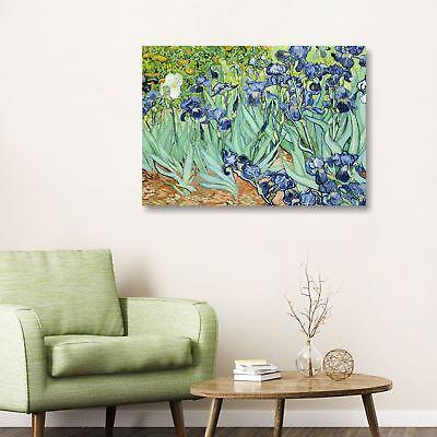 Van Gogh iris design quadro stampa tela dipinto telaio arredo casa