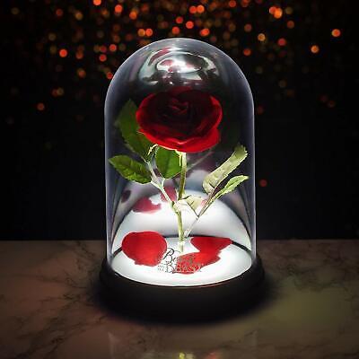 Lampada Incantata Disney La Bella e la Bestia Rosa incantata, Multicolore 4