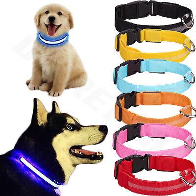USB Rechargable LED Dog Pet Collar Flashing Luminous Safety Light Up Nylon UK 2