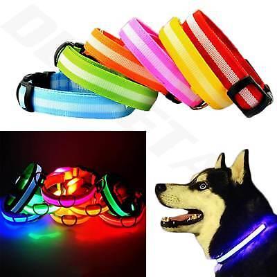 USB Rechargable LED Dog Pet Collar Flashing Luminous Safety Light Up Nylon UK 3