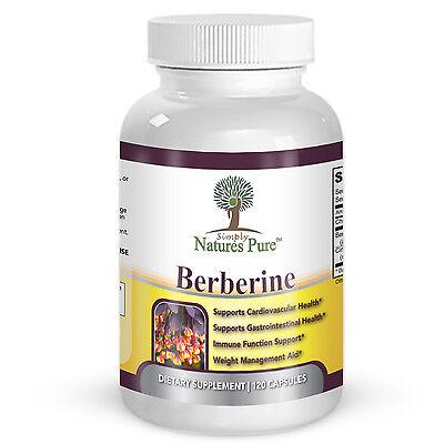 Berberine HCl 500mg Premium - 120 capsules - 2 Month Supply 2