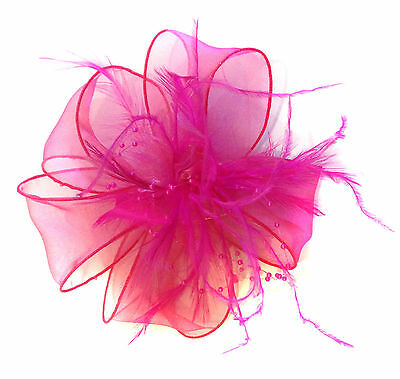 Ladies Feather Hair Wedding Fascinator Clip Races Bridal Hair Accessory Ascot 6