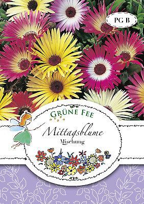 MITTAGSBLUME MISCHUNG 2X 13440 Sämereien Blumen Samen Steingarten ...