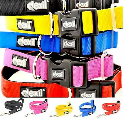 Warning Alert Dog Collar Lead Harness Coat! Award Winning Pet Product! Why Wait? 11