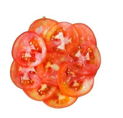 PREMIUM Schneidescheibe E10 Gemüseschneider GAM FAMA CELME RestoItalia Gastlando 5