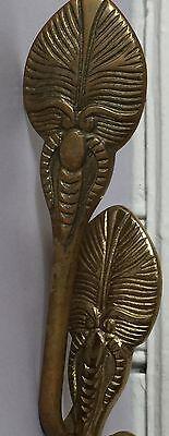 Metal Beetle Bug Design Wall Brass Hooks Hardware Set Of 2 Antique Highly Adorn 8