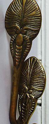 Metal Beetle Bug Design Wall Brass Hooks Hardware Set Of 2 Antique Highly Adorn 4