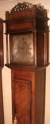 "Antique  Slim Walnut  Brass Dial  ""Plymouth""   Longcase / Grandfather Clock 2"