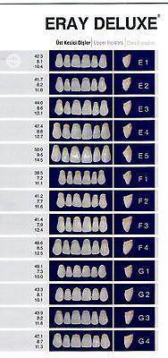 Eray Deluxe 12x 28er 3 Schicht Kunststoffzähne-CE A3