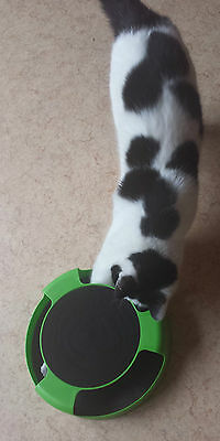Catch The Mouse Motion Moving Cat Scratch Pad Toy Claw Care Mat +Free Catnip 4