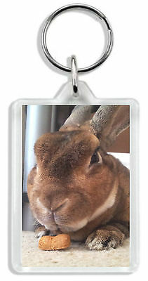 Personalised Photo Keyring Any image &/or text Large size 70 x 45mm Great Gift! 4