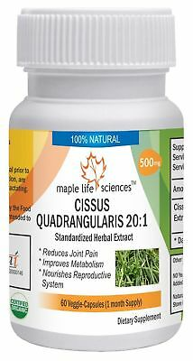Cissus Quadrangularis Extract Capsules For bone strengthing & osteoporosis 3