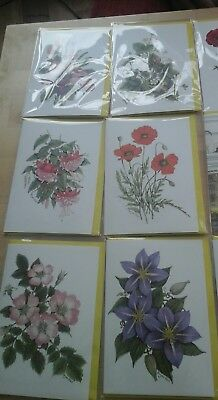 50 Every Day Blank Cards, Wholesale Joblot Greeting Cards 2