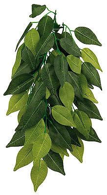 Silk Hanging Plants For Terrarium - Fish Tank Abutilon / Ficus 30cm Or 50cm 2