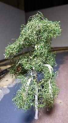 3 Birken, 120 mm hoch in Premium Qualität, jeder Baum ist ein Unikat 8