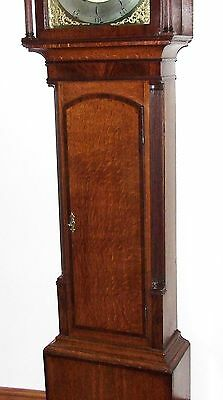 Antique Rolling Moon Oak & Mahogany Longcase Grandfather Clock MOYLE CHESTER 8