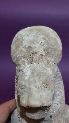 ANCIENT EGYPTIAN ANTIQUES Half STATUE Of GODDESS SEKHMET EGYPT Luxor STONE BC 10