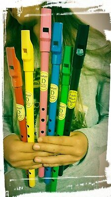 Tin Whistle D Coloured Children Waltons Rainbow Loose Pack Pink Green Blue Red 3