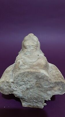 RARE ANCIENT EGYPTIAN ANTIQUE Half STATUE Of GODDESS SEKHMET EGYPT LIMESTONE BC