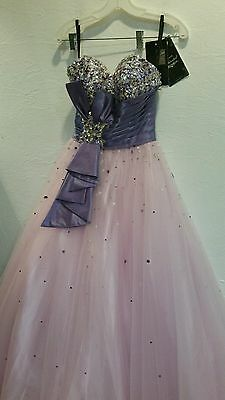 Disney Forever Enchanted Tulle Strapless Prom Pagent Wedding Dress Sz 0 35592 281 21 Picclick
