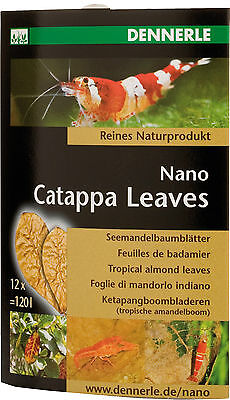 Dennerle Nano Catappa Indian Almond Leaves for Shrimp Discus Betta Fish