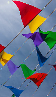 10m 20 Flags Bunting Blue Rose Gold Silver White Red Pink Purple Green 32 Feet 4