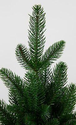 Nordmanntanne 210cm Kunstlicher Weihnachtsbaum Tannenbaum Kunststoff