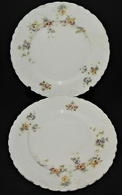 2 Herman Ohmne Silesia Germany China Dinner Plates Floral Pattern 140? Gold Trim 3