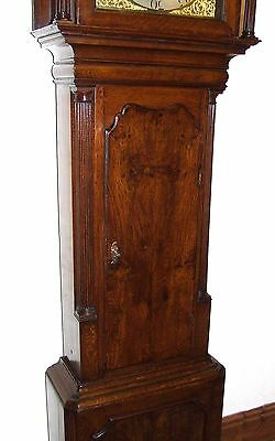 Antique Brass Dial Burr / Pollard Oak Longcase Grandfather Clock MOSS FRODSHAM 7