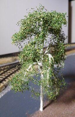 3 Birken, 120 mm hoch in Premium Qualität, jeder Baum ist ein Unikat 9