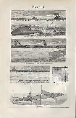 Lithografien 1905: Fischerei I/II. Fisch-Herings-Dampfer Angelfischerei Angeln 2