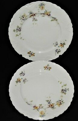 2 Herman Ohmne Silesia Germany China Dinner Plates Floral Pattern 140? Gold Trim 4