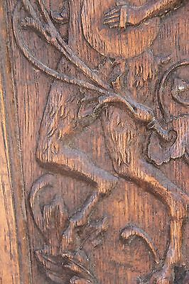 Vintage French Carved Oak Satyr/Bacchant Panels 8