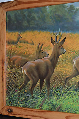 OLD BLACK FOREST HUNTING PICTURE ROEBUCK DEER LITHOGRAPH GERMANY c1890 3