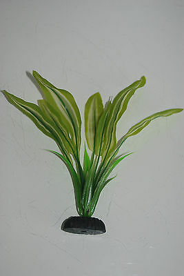 Aquarium Silk Plant Amazon Broad Leaf Pale Green 50 cms High 6